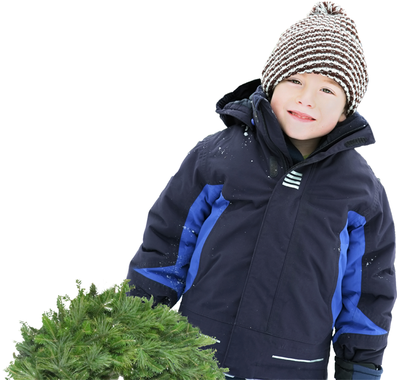 Tuckaway child picking tree